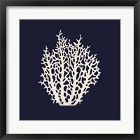 Framed Contemporary Coastal Coral