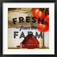 Fresh From The Farm Framed Print