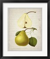 Pears 2 Framed Print