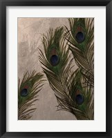 Peacock Feathers I Framed Print