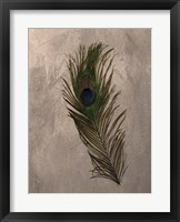Peacock Feathers II Framed Print