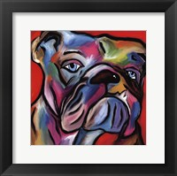That's Bull Framed Print