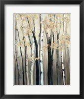 Golden Birch I Framed Print