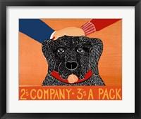 Framed 2s company