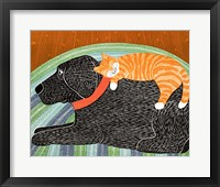 Framed Catnap Striped no Bubble