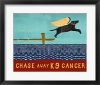 Framed Chase Away K9 Cancer