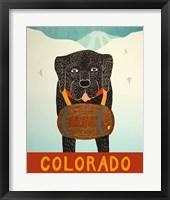 Framed Colorado Beer Dog Black
