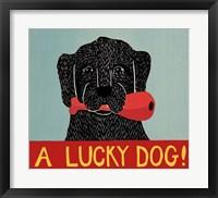 Framed Lucky  Dog Black