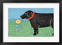 Framed Nature Dog Good Dog