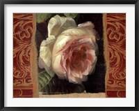 Framed Classic White Rose