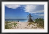 Framed Dune Trail