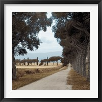 Tuscan Fatorria Strada No. 2 Framed Print