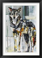 Framed Mexican Gray Wolf