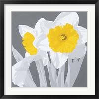 Ray of Sunshine Framed Print