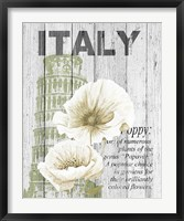 Italy Poppies Framed Print