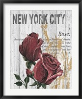 New York Roses Framed Print