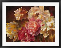 Peonies in Pastel Framed Print