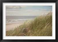 Framed Beach Grass I