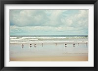 Framed Beachcombing