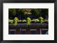 Framed French Quarter, New Orleans, Louisiana