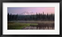 Framed Mount Rainier National Park, Washington