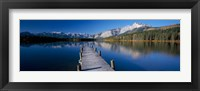 Framed Hector Lake, Mt John Laurie, Rocky Mountains,  Alberta, Canada