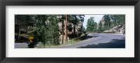 Framed Winding Road SD