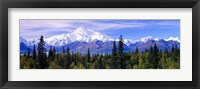 Framed \Denali National Park, Alaska\