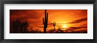 Framed Sonoran Desert Sunset, Arizona
