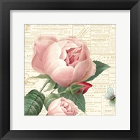 Roses in Paris V Framed Print