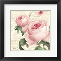Roses in Paris VI Framed Print