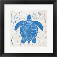 Sea Creature Turtle Blue Framed Print