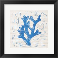 Sea Creature Coral Blue Framed Print