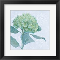Blue Hydrangea I Framed Print