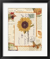 Falling for Fall II Framed Print