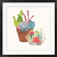 Succulent Garden II Framed Print