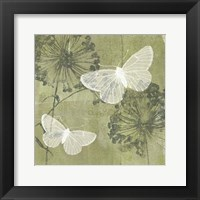 Dandelion & Wings II Framed Print