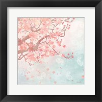 Sweet Cherry Blossoms III Framed Print