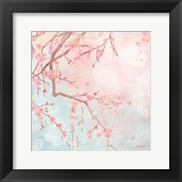 Sweet Cherry Blossoms IV Framed Print