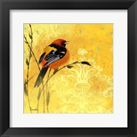 Oriole & Cartouche II Framed Print