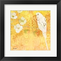 Budgie & Cartouche I Framed Print