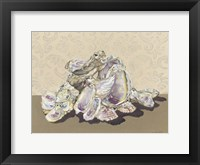 Shell Collection II Framed Print