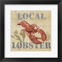Wild Caught Lobster Framed Print