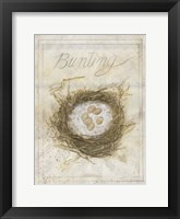 Framed Nest - Bunting