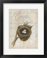 Framed Nest - Oriole