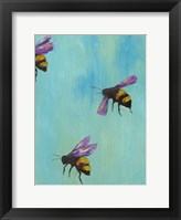 Framed Pollinators III