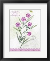 Flower Study on Lace III Framed Print