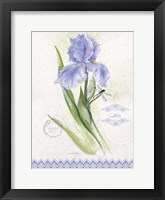 Flower Study on Lace VII Framed Print