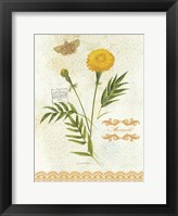 Flower Study on Lace XI Framed Print