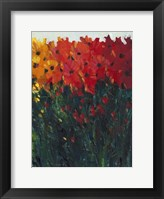 Color Spectrum Flowers I Framed Print
